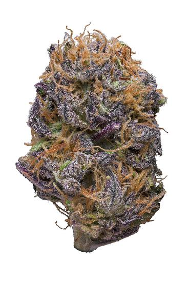 Sour Grape - Hybrid Cannabis Strain