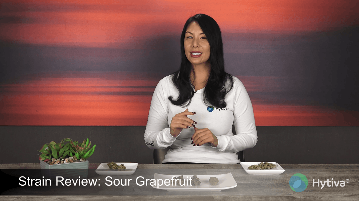 Strain review video: Sour Grapefruit