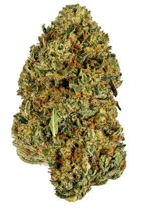 Sour Joker - Sativa Cannabis Strain