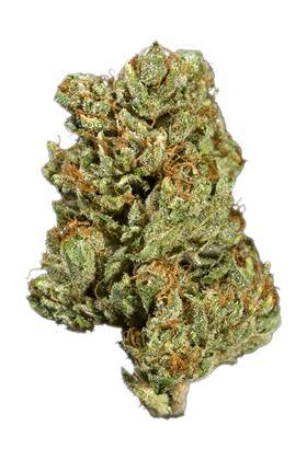Sour Kush Strain - Hybrid Cannabis Review, CBD, THC