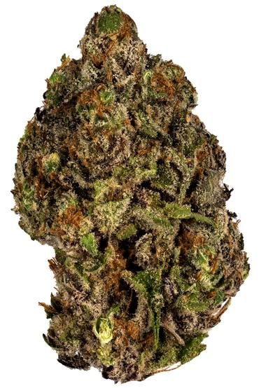 Sour Patch Kiss - Hybrid Cannabis Strain