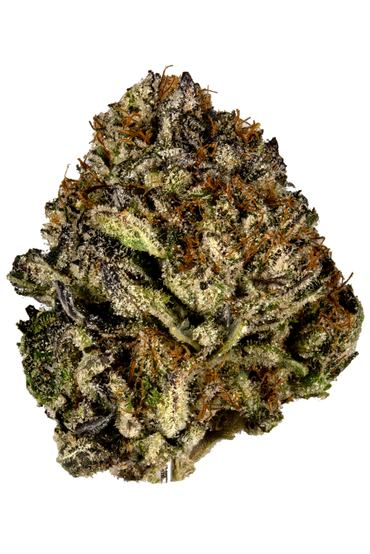 Sour Power OG - Hybrid Cannabis Strain