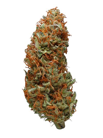 Sour Power - Sativa Cannabis Strain