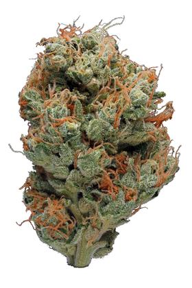 Sour Willie - Sativa Cannabis Strain