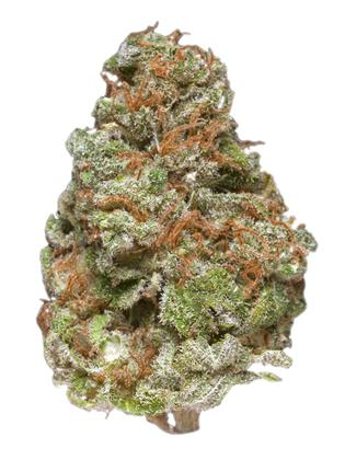Space Dawg - Indica Cannabis Strain
