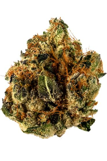 Star Killer - Hybrid Cannabis Strain