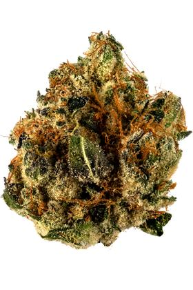 Star Killer - Hybride Cannabis Strain