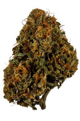 Strawberry Banana Sherbet - Hybrid Cannabis Strain