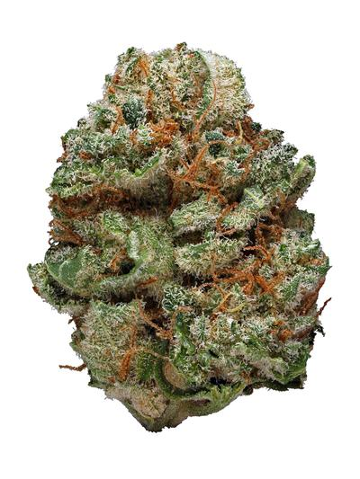 Strawberry Blue - Sativa Cannabis Strain