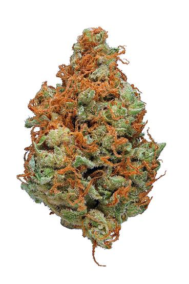 Strawberry Cough - Sativa Cannabis Strain