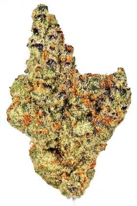 Sundae Driver Strain - Hybrid Cannabis Video, THC, Terpenes