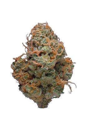 Sunset Haze - Híbrida Cannabis Strain