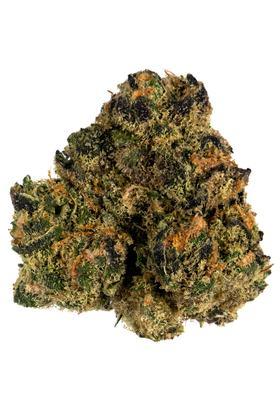 Sunset Sherbet Strain - Hybrid Cannabis Video, CBD, THC