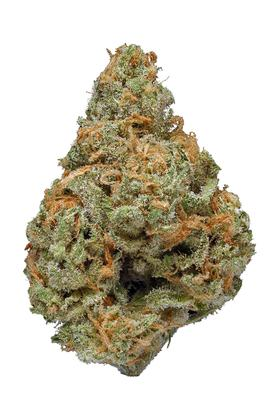 Super Blue Dream - Hybride Cannabis Strain