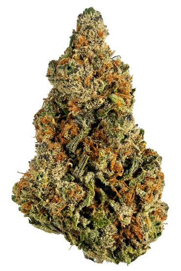 Super Lemon Haze - Sativa Cannabis Strain