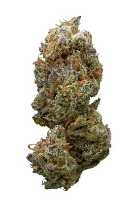 Sweet Cheese - Sativa Cannabis Strain