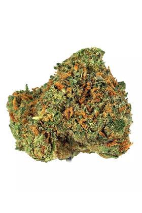Tahoe Lemonade Strain - Hybrid Cannabis Video, CBD, THC