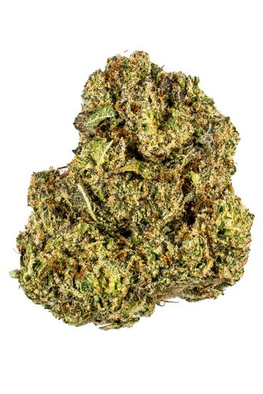 The Guice - Hybrid Cannabis Strain