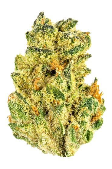 Matrix - Hybrid Cannabis Strain