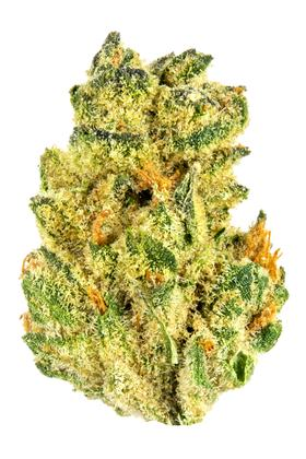 Matrix - Indica Cannabis Strain