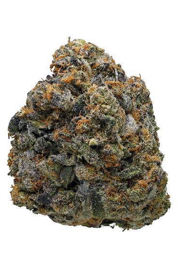 Thin Mint Girl Scout Cookies - Hybrid Cannabis Strain