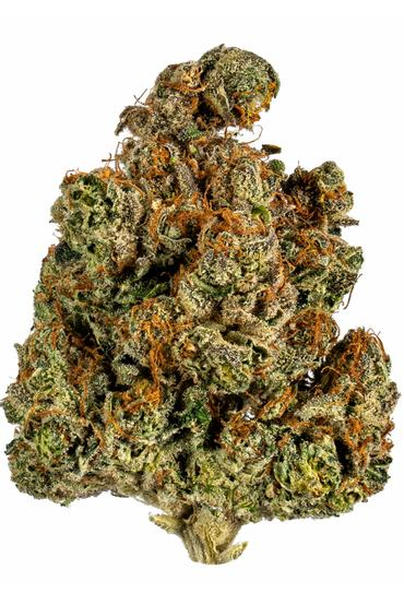 Trainwreck - Sativa Cannabis Strain