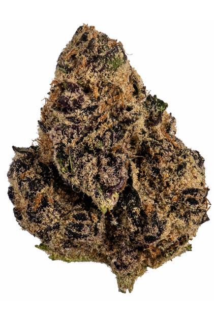 Hybrid Cannabis Video, CBD, THC