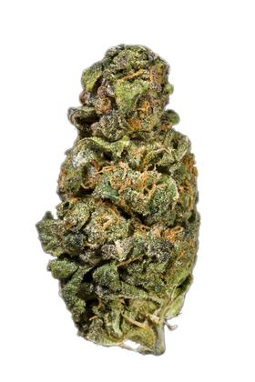 Twista - Sativa Cannabis Strain