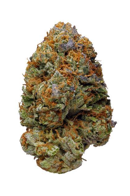 Twisted Citrus Strain - Sativa Cannabis Review, THC : Hytiva
