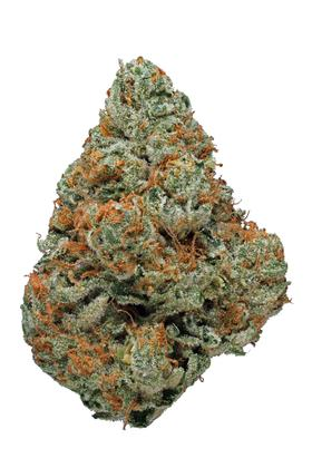 Verde Electric - Hybrid Cannabis Strain