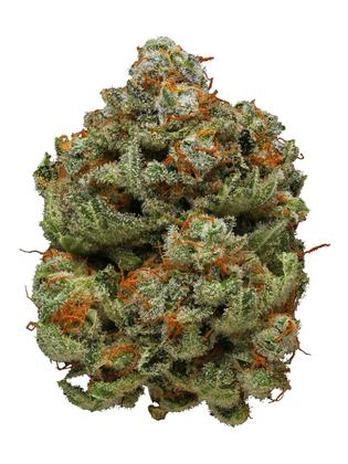 Watermelon - Indica Cannabis Strain