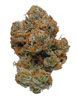 White Buffalo - Sativa Cannabis Strain