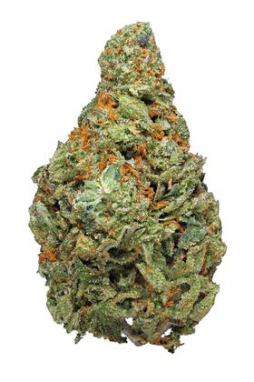 White Dragon - Indica Cannabis Strain