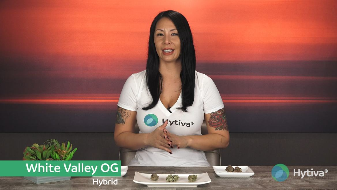 Strain review video: White Valley OG