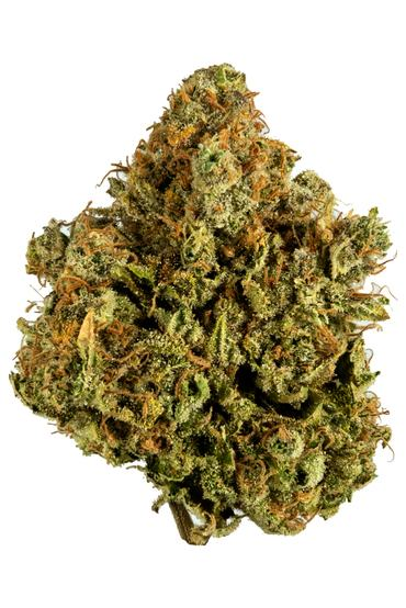 White Widow - Hybrid Cannabis Strain