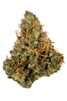 Zelly's Gift - Sativa Cannabis Strain